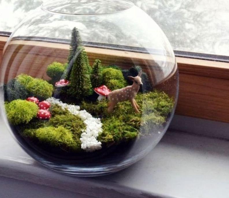 Флорариумы для души: сделать уютный растительный террариум сможет каждый