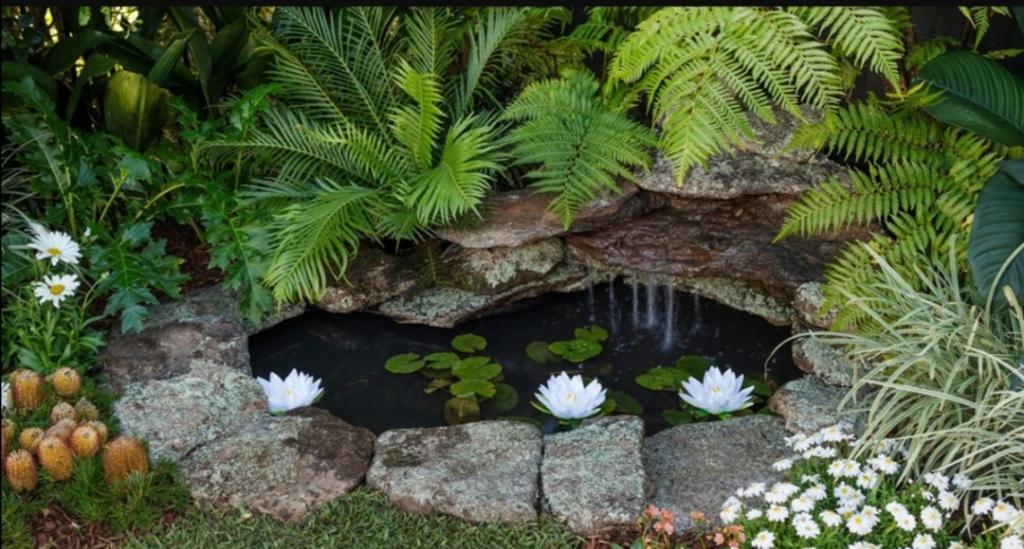 Построили пруд на заднем дворе: этапы от выкапывания ямы до запуска кувшинок