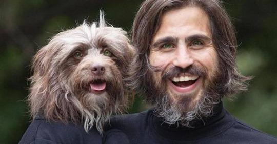 Как две капли: хозяин и его пес нереально похожи друг на друга