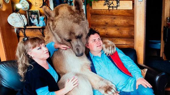 Как складывается судьба семьи, которая 28 лет живет с медведем в одном доме