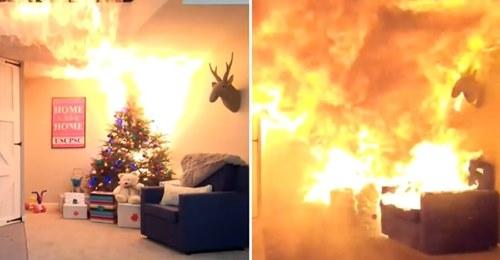 Елочка, гори! Новогодняя красавица может превратить комнату в груду пепла за 23 секунды