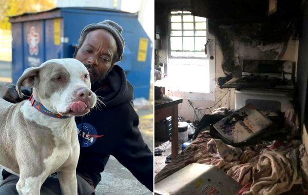 Бездомный ворвался в горящий приют для животных, рискуя своей жизнью и спас всех питомцев