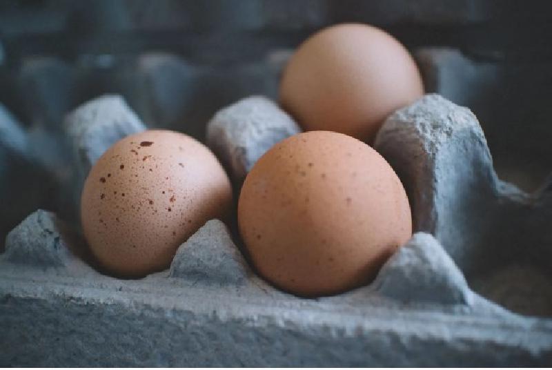 Хитрости от огородников: как при посадке растений можно использовать яичные лотки