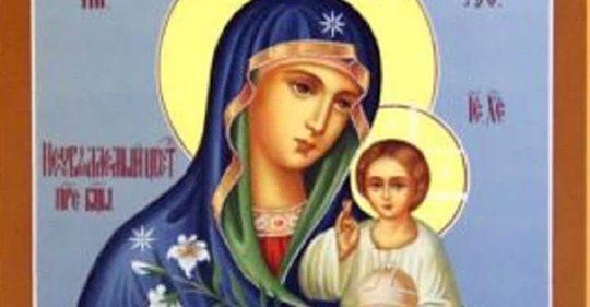 Молитва иконе «Неувядаемый цвет» — Помолимся об укреплении и здоровье семьи