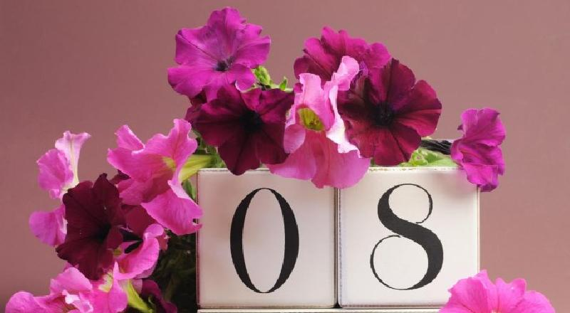 Для мамы, для любимой девушки: какие подарки порадуют и что подарить на 8 Марта