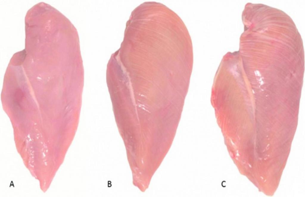 Я перестала покупать куриные грудки с белыми прожилками, прочитав последние исследования: делюсь информацией