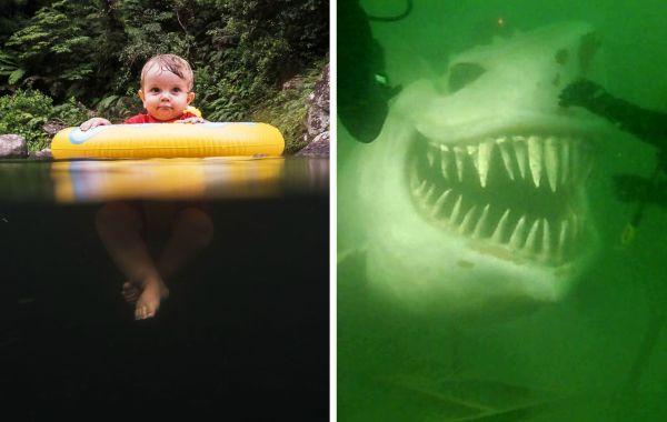 20 тревожных морских снимков, которые выведут из равновесия людей с боязнью глубины