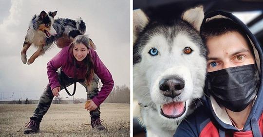 18 милых и забавных фотографий собак, которые согреют и подарят улыбку даже в самый хмурый день