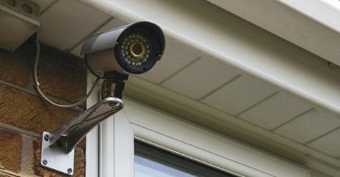 Поставили камеру на даче. Долго смеялись, узнав, что соседка делает в огороде в наше отсутствие