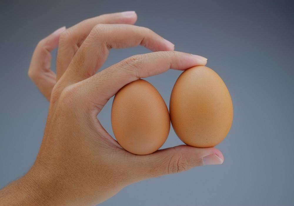 S, M или L – яйца какого размера чаще всего имеют в виду кулинары в своих рецептах? Яйца какой величины сделают выпечку идеальной