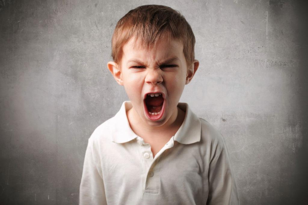 Гнев ребенка: уважение, понимание, наблюдение и другие стратегии, которые помогут родителям правильно реагировать