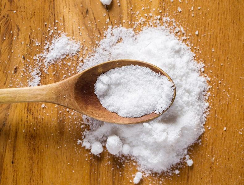 Против кротов, слизней и муравьев: как применить соль в огороде для защиты растений от вредителей