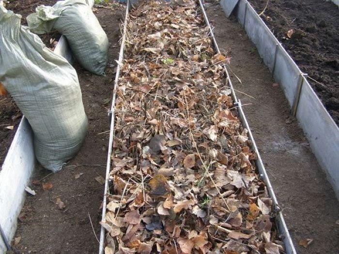Теплые грядки осенью: как правильно их сделать и какой материал лучше использовать