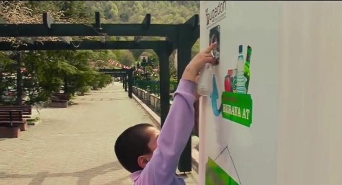 В Стамбуле появились автоматические кормушки для бездомных собак