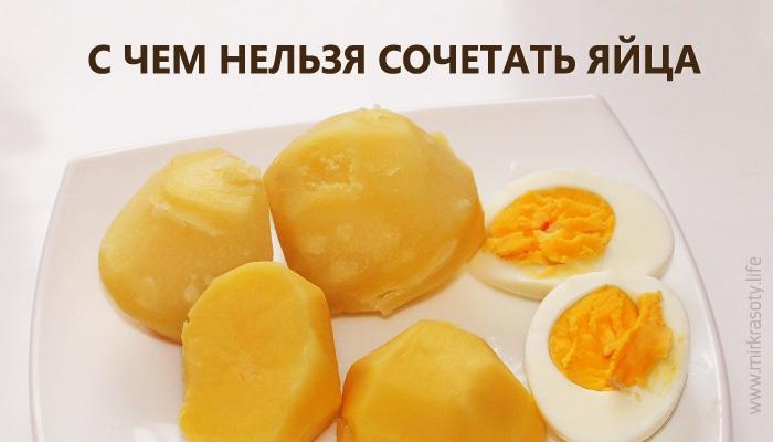 С чем нельзя сочетать яйца. Или откуда берутся проблемы с ЖКТ…