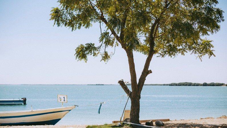 Flamingo Beach Resort 3* (ОАЭ/Ум-Аль-Кувейн): фото и описание номеров, сервис, развлечения и отзывы туристов