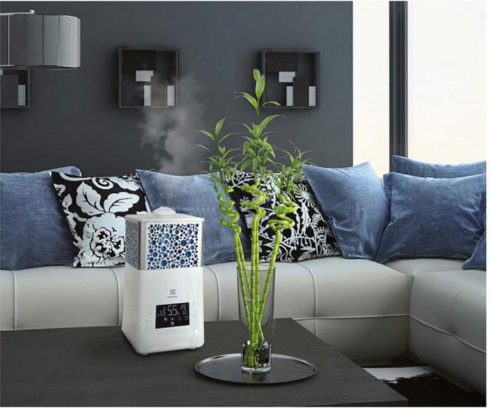 Увлажнитель воздуха Electrolux: модели, инструкция, отзывы