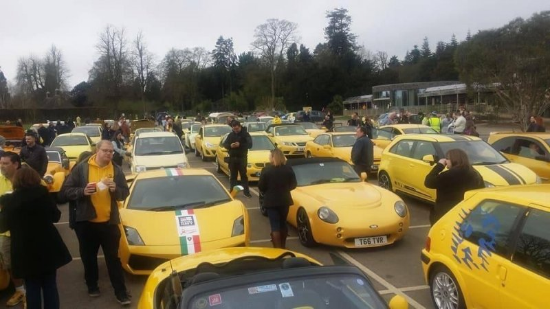 Сотни жёлтых авто приехали вдеревню чтобы поддержать пенсионера
