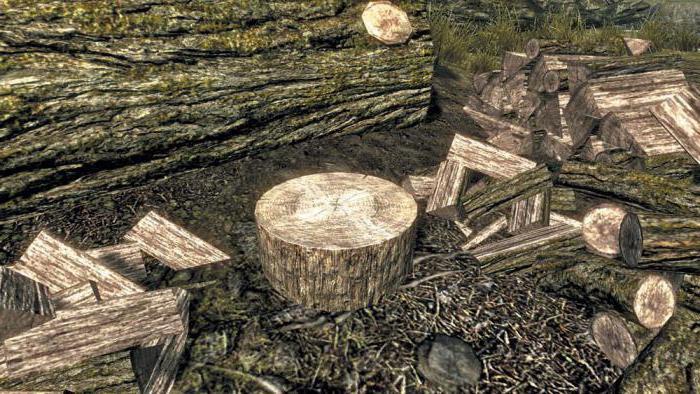 Значение пословицы «Лес рубят   щепки летят». Интересные факты