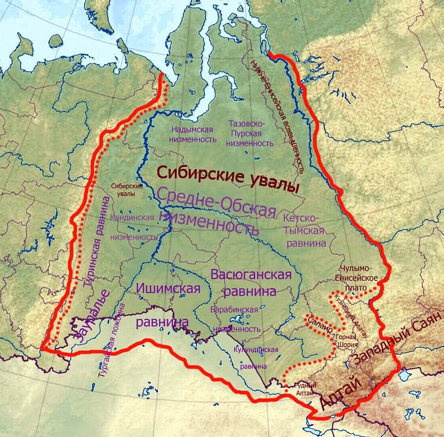 Васюганские болота: где находятся, описание, интересные факты