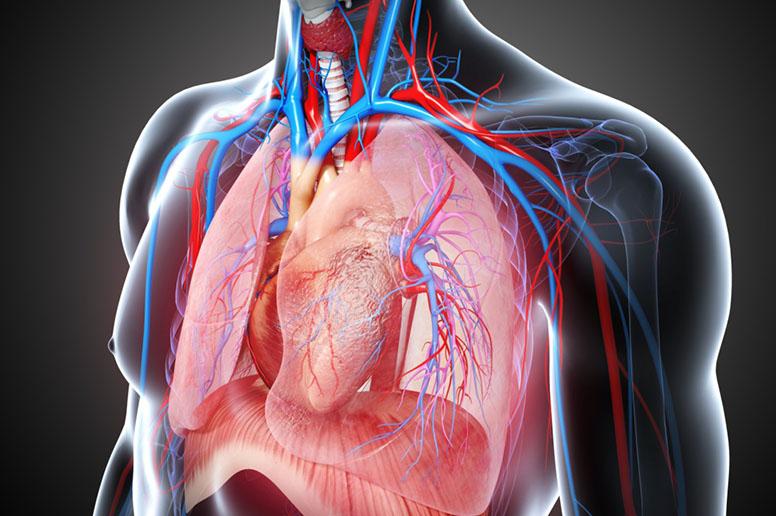 Прикладная кинезиология: нарушение дыхания