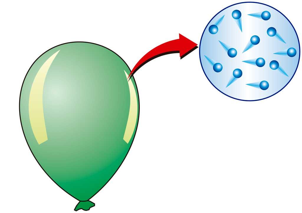 Физика: давление твердых тел, жидкостей и газов