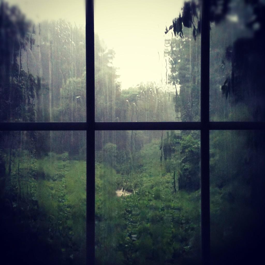 Как воздействует звук грома и дождя на организм человека