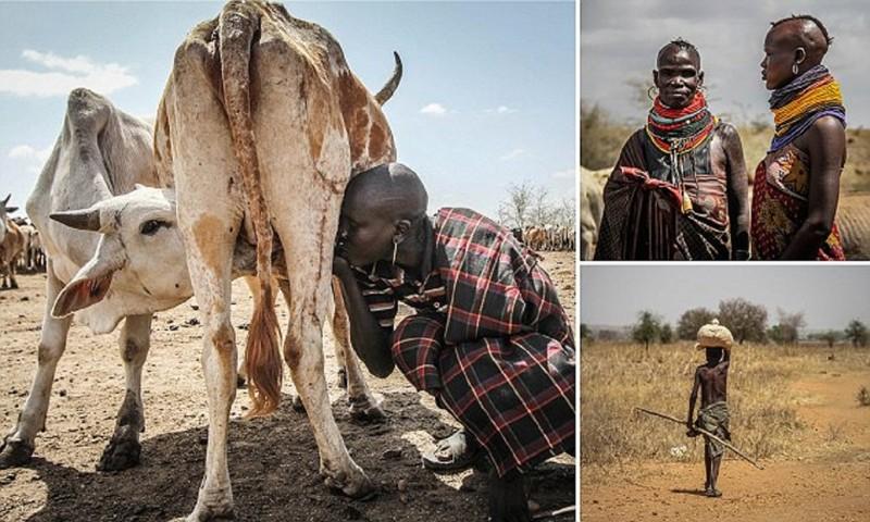 Этоафриканское племя погибает отзасухи