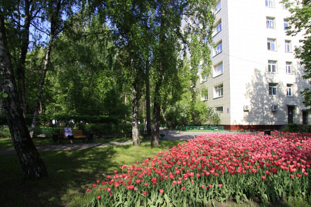 52 городская больница Москвы: отделения, врачи, адрес, как добраться и отзывы пациентов