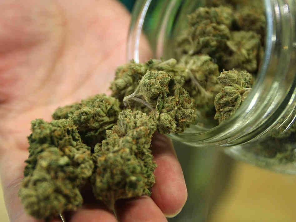 Вред марихуаны для здоровья. Тест на марихуану. Последствия курения марихуаны