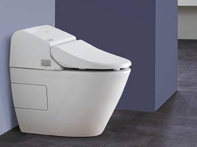 «Туалетный утенок»   чистящее средство для унитазов