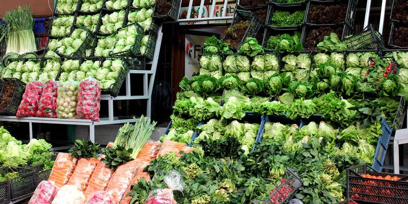 Бизнес идея: выращивание зелени