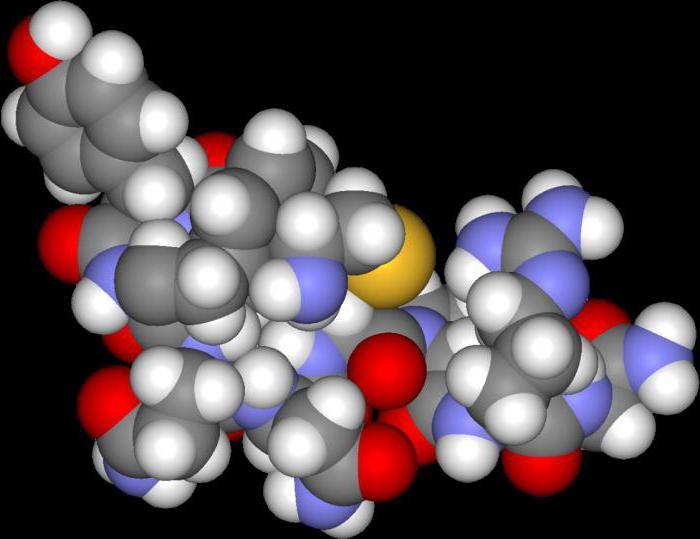 Вазопрессин (гормон): функции и роль в организме. Антидиуретический гормон