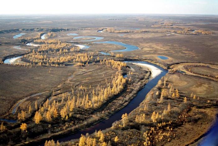Спутниковые изображения многих озер в Сибири показывают тревожную картину