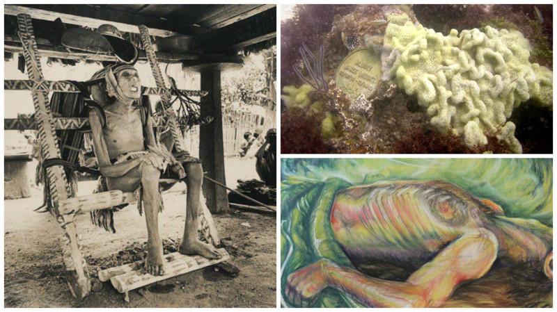 10самых необычных способов погребения совсех уголков мира