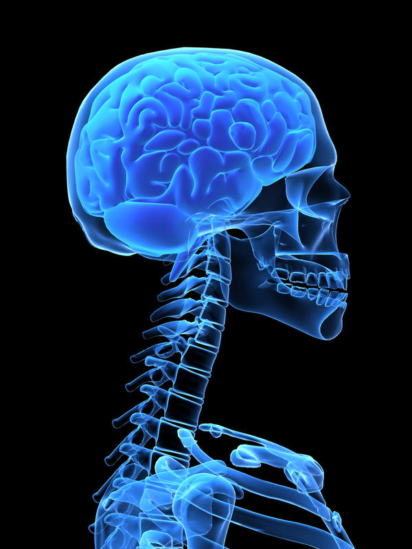 Гематома головного мозга: виды, причины, симптомы, лечение и последствия