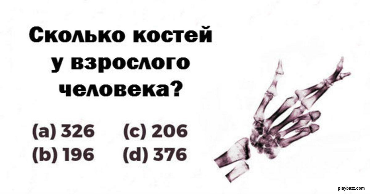 Только 3% мужчин могут пройти этот тест пройти этот тест по анатомии!