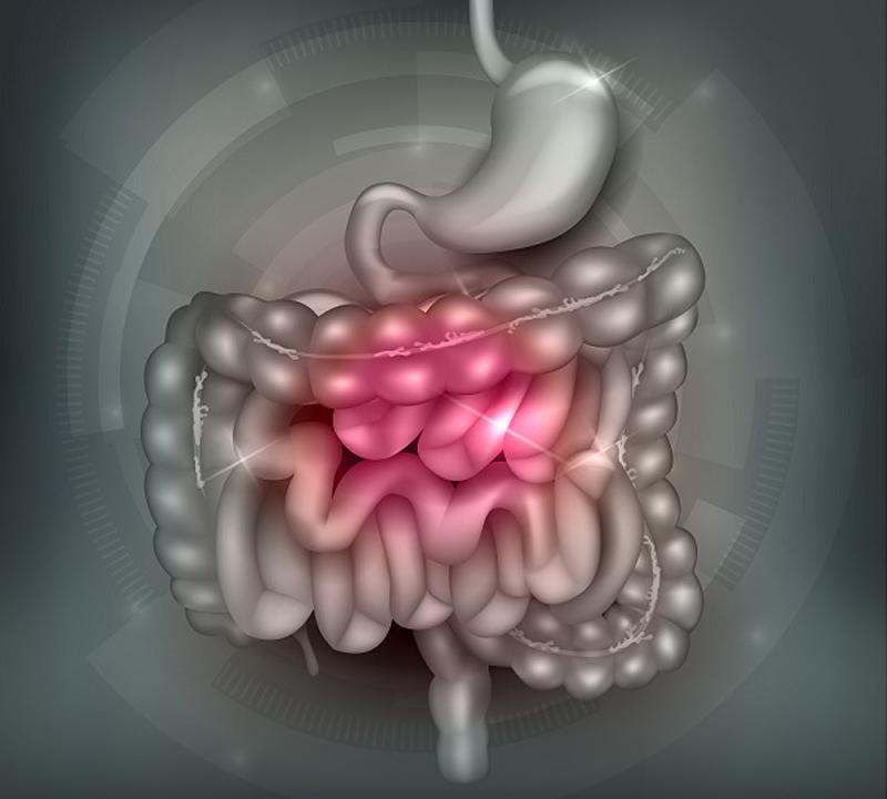 Су джок терапия: лечебные точки при несварении желудка