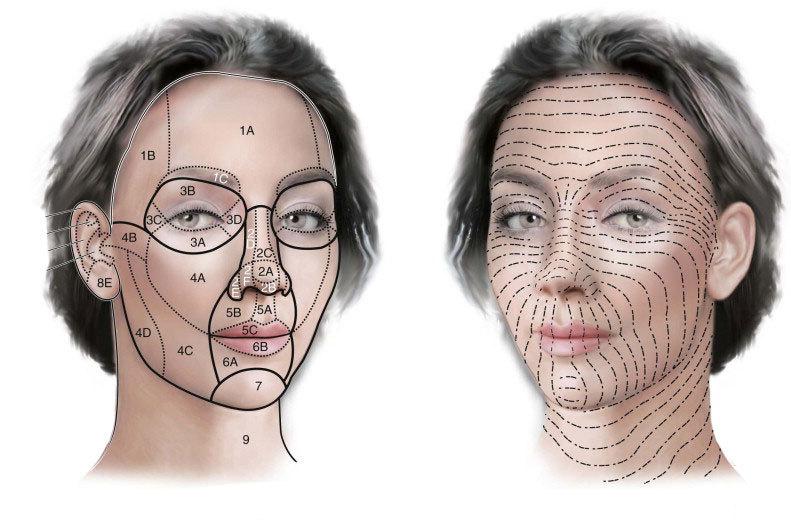 Простые процедуры, замедляющие старение