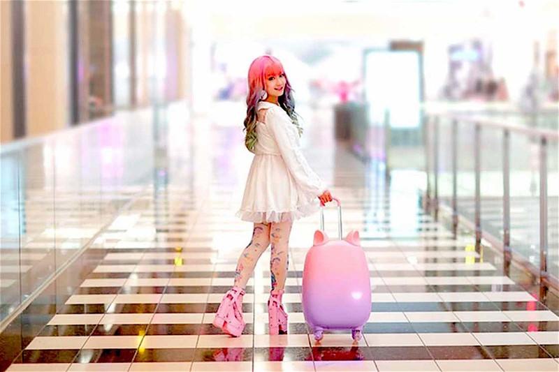 Чудо кото чемодан