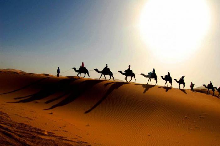 Неужели древние люди повлияли на образование пустыни Сахара?
