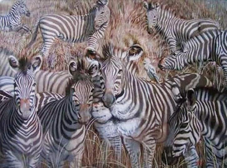 Какое животное бросилось в глаза первым? Ответ может растолковать ваши взгляды на жизнь!